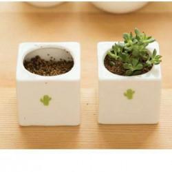 創意植物迷你陶瓷花盆 陶瓷盆栽 不附植物